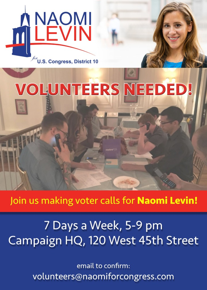 Levin_volunteerflyer
